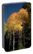 Aspens And Sky Portable Battery Charger