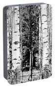 Aspens And The Pine Black And White Fine Art Print Portable Battery Charger