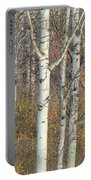 Aspens At Dusk Portable Battery Charger