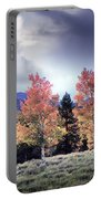 Aspens In Autumn Light Portable Battery Charger
