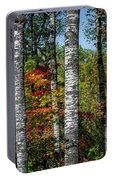 Aspens In Fall Forest Portable Battery Charger