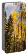 Aspens In Santa Fe 3 Portable Battery Charger