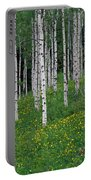Aspens In Spring Portable Battery Charger
