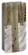 Aspens In Winter 2 Panorama - Santa Fe National Forest New Mexico Portable Battery Charger
