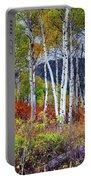 Aspens Meet Autumn Portable Battery Charger