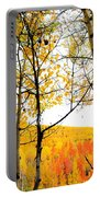 Aspens Of Colorado Portable Battery Charger