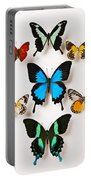 Assorted Butterflies Portable Battery Charger