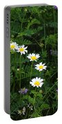 Aster And Daisies Portable Battery Charger
