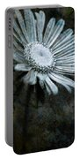 Aster On Rock Portable Battery Charger
