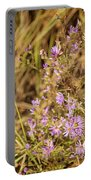 Asters In Autumn Portable Battery Charger