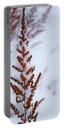 Astilbe Aglow In The Snow Portable Battery Charger