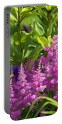 Astilbe In The Garden Portable Battery Charger