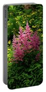 Astillbe In Light And Shadow Portable Battery Charger