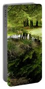 At The Edge Of The Forest Pond. Portable Battery Charger