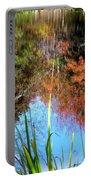 At The Pond Portable Battery Charger