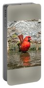 At Water's Edge Portable Battery Charger