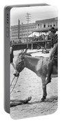 Atlantic City: Donkey Portable Battery Charger