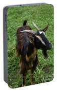 Attractive Goat Standing In A Grass Field On A Farm Portable Battery Charger