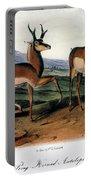 Audubon: Antelope, 1846 Portable Battery Charger