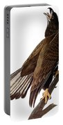 Audubon: Bald Eagle Portable Battery Charger