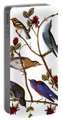 Audubon: Bluebirds Portable Battery Charger