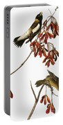 Audubon: Bobolink Portable Battery Charger