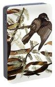 Audubon: Crow Portable Battery Charger