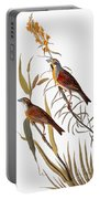 Audubon: Dickcissel Portable Battery Charger