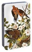 Audubon: Dove Portable Battery Charger
