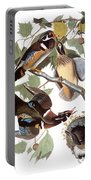 Audubon: Duck Portable Battery Charger