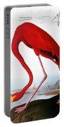 Audubon: Flamingo, 1827 Portable Battery Charger