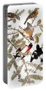 Audubon: Grosbeak Portable Battery Charger
