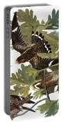 Audubon: Nighthawk Portable Battery Charger