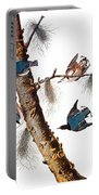 Audubon: Nuthatch Portable Battery Charger