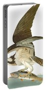 Audubon: Osprey Portable Battery Charger