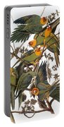Audubon: Parakeet Portable Battery Charger