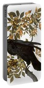 Audubon: Raven Portable Battery Charger