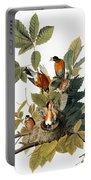 Audubon: Robin Portable Battery Charger