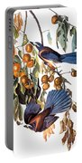 Audubon: Scrub Jay, 1827-38 Portable Battery Charger