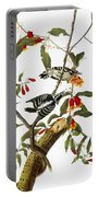 Audubon: Woodpecker, 1827 Portable Battery Charger