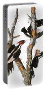 Audubon: Woodpecker Portable Battery Charger