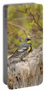 Audubon's Yellow Rumped Warbler Portable Battery Charger