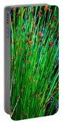 Australian Native Grass Portable Battery Charger