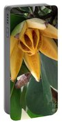 Autograph Tree Seed Pod Portable Battery Charger