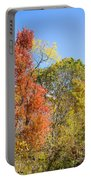Autumn # 5 Portable Battery Charger