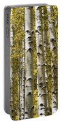 Autumn Aspens Portable Battery Charger by Adam Romanowicz