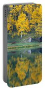 Autumn Aspens Along Route 550, North Portable Battery Charger