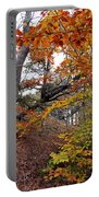 Autumn At Beech Forest Portable Battery Charger