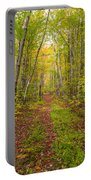 Autumn Birch Woods Portable Battery Charger