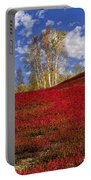 Autumn Birches And Barrens Portable Battery Charger